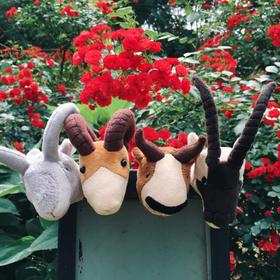 四羊冰箱贴高原动物藏羚羊盘羊岩羊羚牛科普毛绒可爱玩具冰箱贴