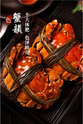 (8只装)阳澄湖大闸蟹(礼券)--苏州市民卡专供