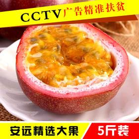 【广告精准扶贫】安远百香果新鲜现摘西番莲鸡蛋果5斤礼盒装大果