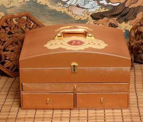 尊善堂-热能量离子养护套(配48次药粉)【买十送一】身体套盒养生套盒