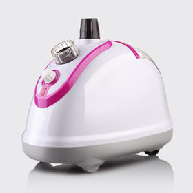 现代时尚挂烫机XT-F11  不锈钢喷头 蒸汽 多档控温 开启蒸汽新时代