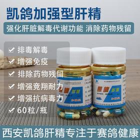 凯鸽强化肝精丸鸽用鸽药排毒信鸽鸽子赛鸽全套大全保健营养调理药