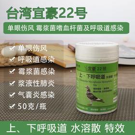 台湾宜豪22号鸽药信鸽鸽子单眼伤风药上下呼吸道清理专治专用感染