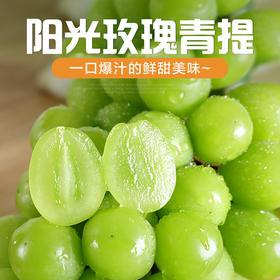 【顺丰空运】云南阳光玫瑰晴王香印青提 新鲜葡萄水果产地直发 3斤包邮