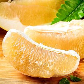 正宗梅州大埔白肉蜜柚当季水果柚子5斤10斤装