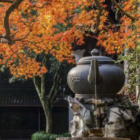 10.19徒步杭州最美森林步道,探寻天下第三泉(1天活动)