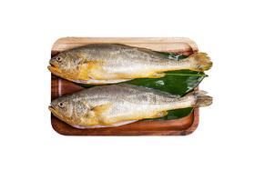 【京东】海名威 冷冻三去黄花鱼(大黄鱼) 750g 2条 免杀即烹 海鲜水产【蛋肉熟食】