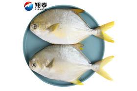 【京东】翔泰 冷冻二去金鲳鱼 1kg/袋 2条 BAP认证(去鳃去内脏) 海鲜水产【蛋肉熟食】