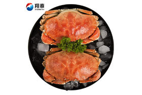【京东】翔泰 冷冻 加拿大进口熟冻黄道蟹/面包蟹 400g 1只盒装 海鲜水产【蛋肉熟食】