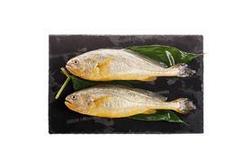 【京东】海名威 鲜冻黄花鱼(宁德大黄鱼)700g 2条 袋装 海鲜水产【蛋肉熟食】