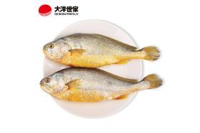 【京东】大洋世家 黄花鱼 黄鱼 700g/袋 2条装 火锅烧烤海鲜 大黄鱼 生鲜水产【蛋肉熟食】
