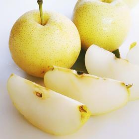当季上新 | 河南有机黄金梨 脆甜多汁 肉厚核小 清甜爽口 5斤装
