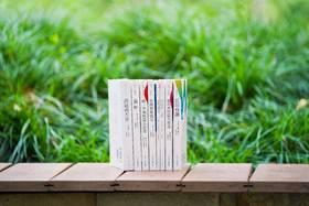 【有声导读版 ,赠帆布袋】《世界文学经典名著》第二辑全8册
