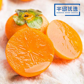 软柿子 | 色泽彤红 口感绵软 饱满多汁 甜而不腻 4斤装顺丰直达