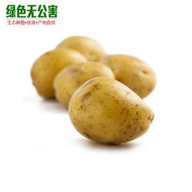1081-小土豆