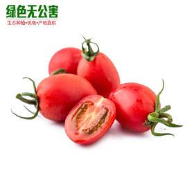 1123-小西红柿(红)