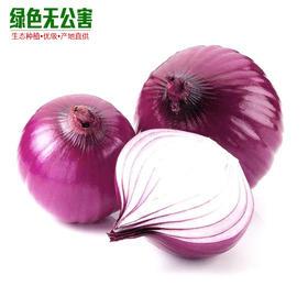 1075-洋葱(紫皮)