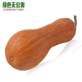 1155-长南瓜