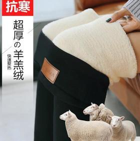 【打底裤】新款大码加厚羊羔绒打底裤女冬加绒加厚高腰