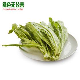 1035-油麦菜