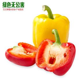 1131-彩椒
