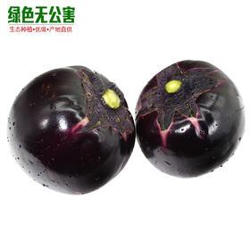 1143-圆茄子