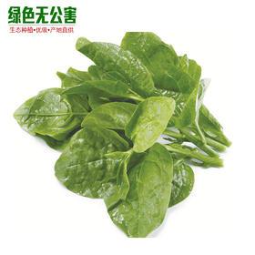 1068-木耳菜