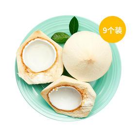 【9个装】A级-泰国椰青送开椰器
