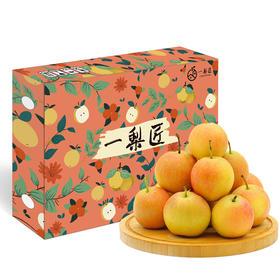【5斤】南果梨 个头均匀人工采摘 果肉细腻 多汁香甜
