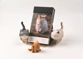 【让猫咪承包你一年的快乐】喵呜不停2020日历 艺术画册|应景图片