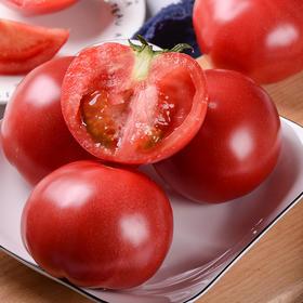 陕西 • 普罗旺斯西红柿  果肉糯糯沙沙  饱满汁足 杜绝空心 拒绝膨大剂 0农残 记忆中的番茄味