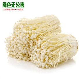 金针菇 3.5元/斤 生态种植 无公害 菌菇 金针磨-835225