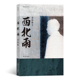 """【预售】西北雨(""""台湾文学金典奖""""长篇小说获奖作品,联合报文学大奖得主童伟格代表作 )"""