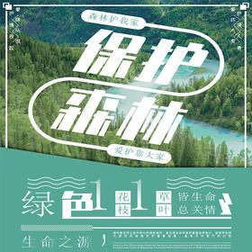 【龙门秘境】--碳汇林公益项目