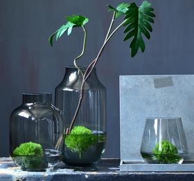 【装饰品】欧式透明玻璃花瓶