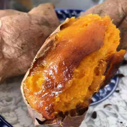 【半岛商城】锋城蜜薯(锦州黑山) 5斤装 约25根 全国包邮产地直发 稀溜的薯肉 流糖的蜜薯