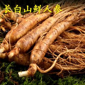 【精选】吉林长白山鲜人参 | 秋冬滋补 一片鲜参 一参健康 | 150g/盒【营养保健】