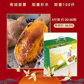 【半岛商城】锋城蜜薯 5斤装 20-30根 全国包邮产地直发 稀溜的薯肉 流糖的蜜薯