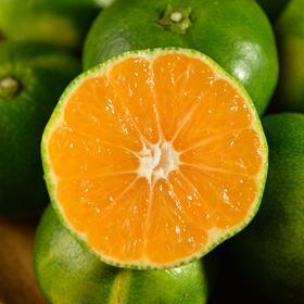 江西 • 九江西海蜜桔 细腻无渣 口感酸甜 果厚皮薄 甜中微酸 气味芳香 产自风景区的桔子