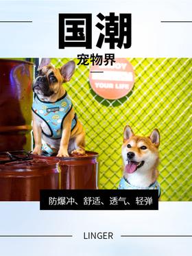 喜归 | 林格尔潮牌中小型狗狗胸背带,蓝色款,多型号可选