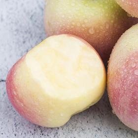 礼泉红富士苹果 皮薄多汁 肉质紧致 清甜脆口 5斤 10斤装