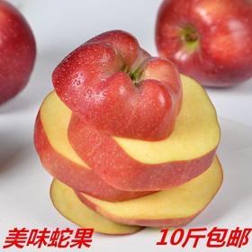 甘肃天水花牛苹果新鲜红蛇果水果批发包邮10斤粉面大苹果