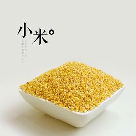 富岗五谷杂粮粗粮 黄小米 月子米新米小黄米小米粥6斤礼盒装