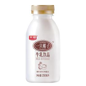 【旅商专供】光明牛奶 一只椰子牛乳饮品250ml