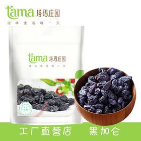 【塔玛庄园】新疆黑加仑葡萄干TM400g/袋 500g/袋