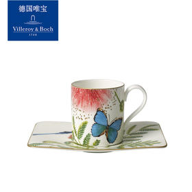 villeroyboch德国唯宝进口骨瓷咖啡杯马克杯水杯彩色创意亚马逊