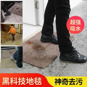 黑科技纳米地毯 神奇去污 吸水力好  防污 防滑 好洗