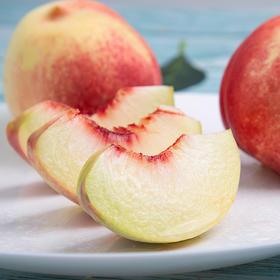 浓郁多汁的蒙阴冬桃 果大肉厚 清香蜜桃 产地新鲜直达 4.5斤装