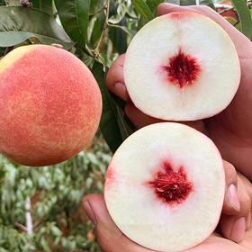 【山东·金秋红蜜 】秋桃 脆甜可口 皮薄肉厚 新鲜桃子 5斤装包邮