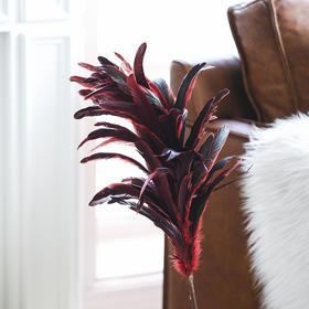 创意羽毛挂饰北欧风墙面壁饰挂件节日装饰品挂件客厅餐厅玄关挂饰